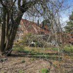 Garten mit Fachwerkhaus im Hintergrund