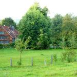 Fachwerkhaus im Grünen
